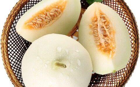 新鲜水果陕西阎良甜瓜时令水果甜瓜香瓜2/5/10斤甘甜爽口